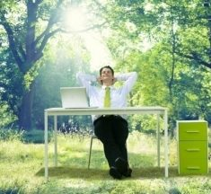 5 Ideas That Employers Need to Create Perfect Working Environment